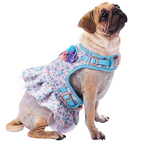 Blueberry Pet 3 Patterns Soft & Comfy Made Well Lovely...