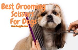 Grooming Scissors and Shears for Pets