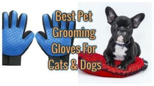 Grooming Gloves for Dogs and Cats List