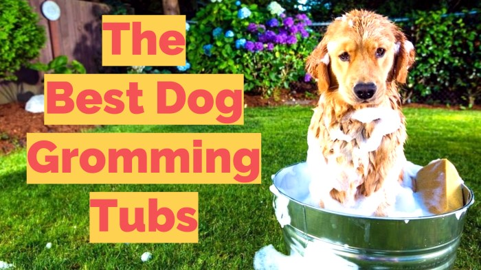 Dog bath tubs review