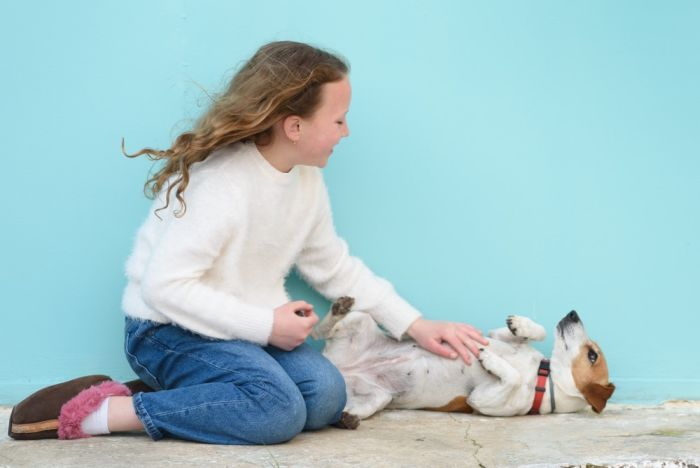 Little girl giving belly rubs to a puppy